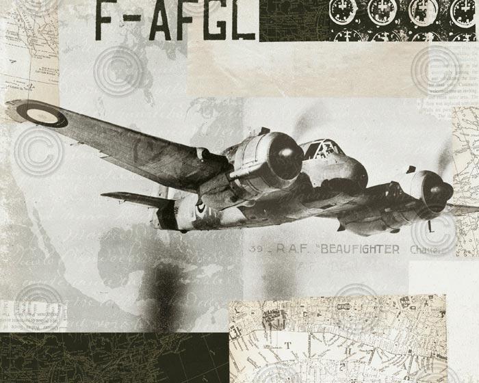 Wings Collage III