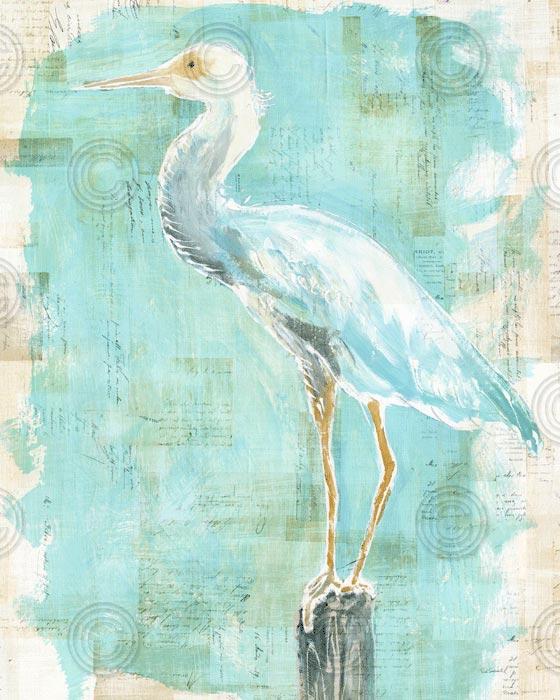 Coastal Egret II v2