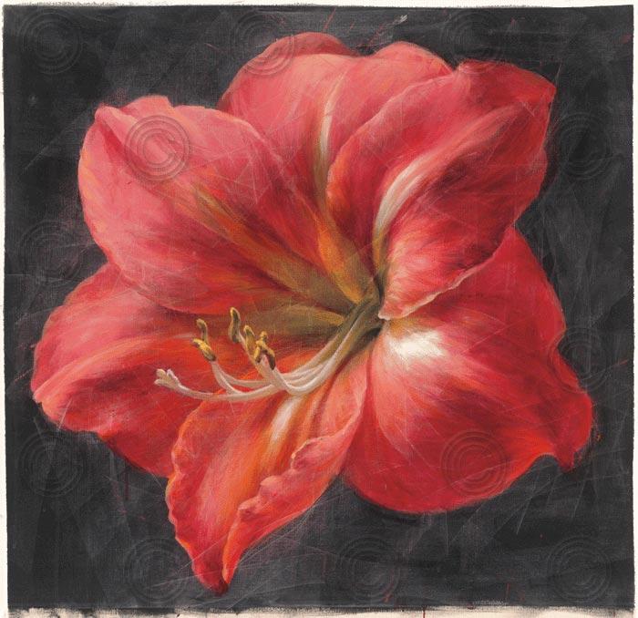 Vivid Floral III Crop