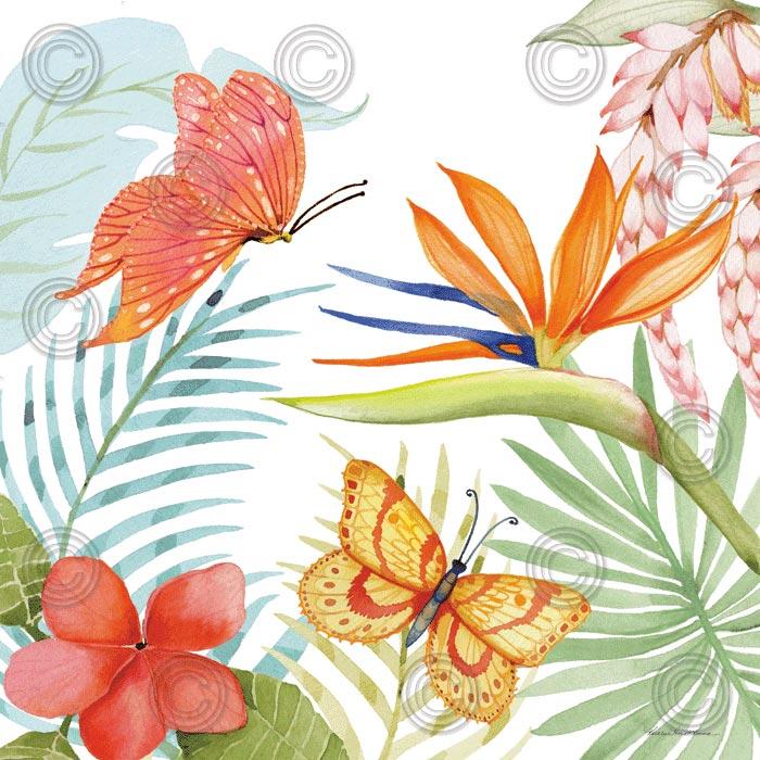 Treasures of the Tropics IV