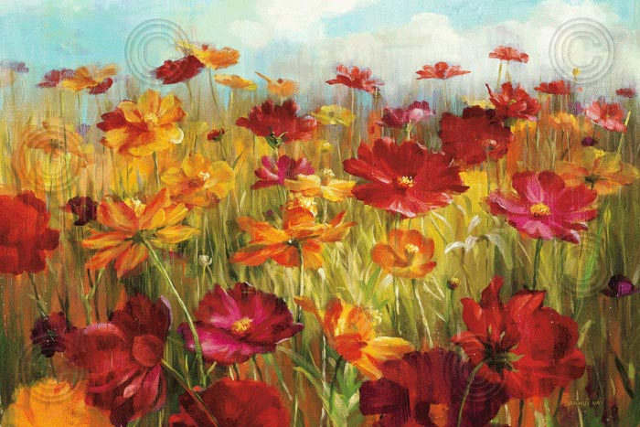 Cosmos in the Field I